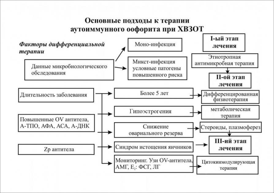 Антиспермальные антитела норма